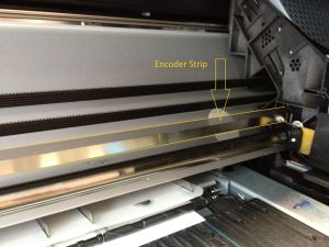 Encoder Strip